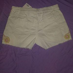 LC Lauren Conrad Women's Shorts Size 4